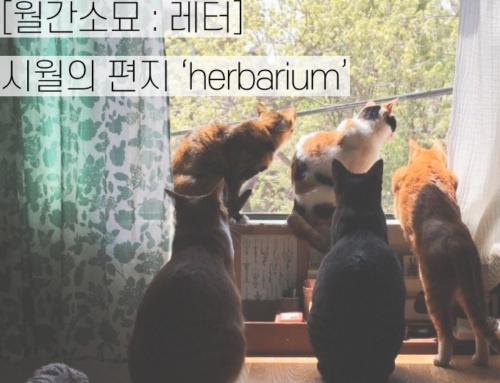[월간소묘: 레터] 시월의 편지 'herbarium'