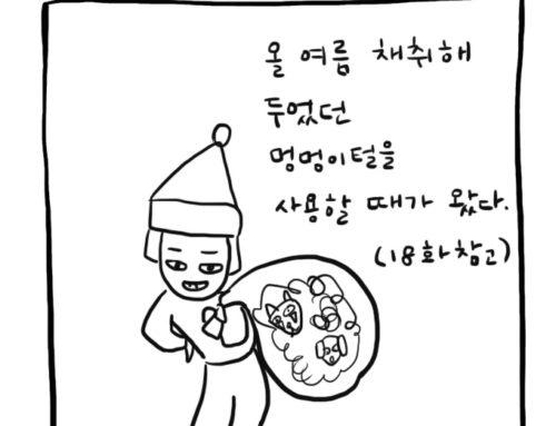 [일상백서] 41. 개털 플레이