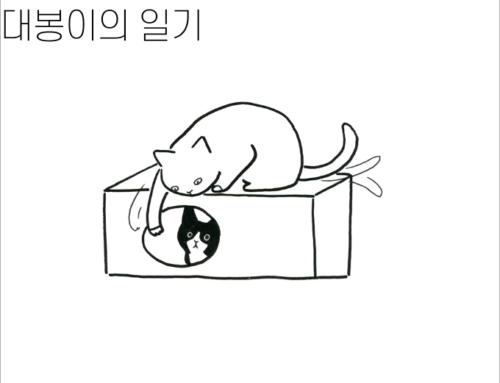 [대봉이의 일기] 박스