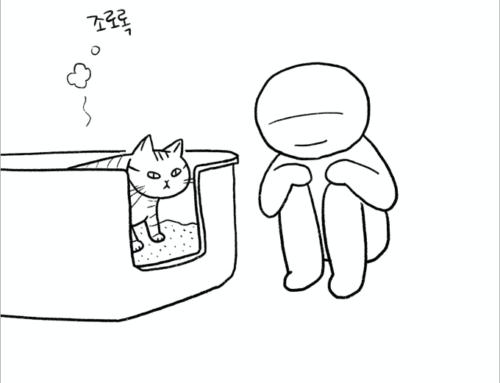 [대봉이의 일기] 사생활